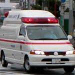 消防車緊急走行【94】堺市消防局・堺非常用救急【Japanese fire enjine】