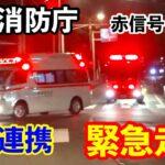 【緊急走行】東京消防庁 救急車とポンプ車のPA連携