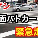 【緊急走行】キザシ覆面パトカー 新宿の街を緊急走行