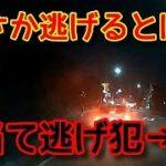 【横転しても逃げる原付!】ドライブレコーダー映像まとめ!煽り運転・危険運転・交通事故ゼロを!