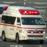 消防車緊急走行【109】堺市消防局・臨海救急出場【Japanese fire enjine】