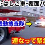 【連なって緊急走行】救急車・はしご車・覆面パトカー 火災現場へ急行