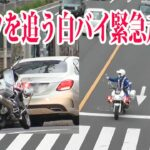 右手で後続車を停め通りを緊急走行で横断!信号無視したベンツを追う交機の白バイ