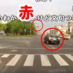 【コメ付き】信号無視したプリウス、無事衝突する【ドラレコ・煽り運転・危険運転・トラブルまとめ026】