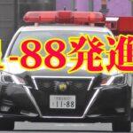 転回した違反車を緊急走行で追う、11-88交通機動隊のパトカー