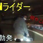 喧嘩勃発!進路を妨害するDQN自転車 ドラレコ・煽り運転まとめ102