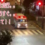救急車 救急隊員 搬送 真夜中 緊急車両 緊急走行  都会の夜は眠りません!