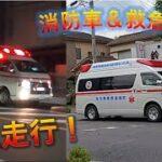【緊急走行2】救急車、救急車、消防車 / Emergency driving of ambulance  and fire engine