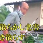 【衝撃映像】ハゲ散らかし老害わめき散らす ドラレコ・煽り運転まとめ【Traffic accident in Japan】