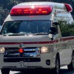 皇居付近を緊急走行する東京消防庁の救急車