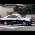 【逃走】原付バイクがパトカーをサクッと巻く【神奈川県警】その後どうなったんやろ