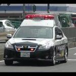 パトカー緊急走行【64】大阪府警・堺警察署 レガシィB4 緊急走行【Japanese Police car】