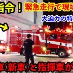 【救助指令!】新車の救助車と指揮車が出場! 特別救助隊の迫力の緊急走行