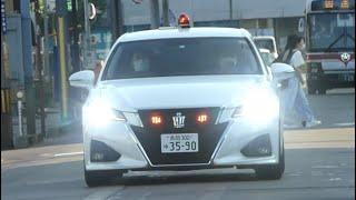 猛烈パッシングで2台同時に検挙!横断歩行者妨害をした車を緊急走行で追跡する交通機動隊の覆面パトカー【交通違反取締り】