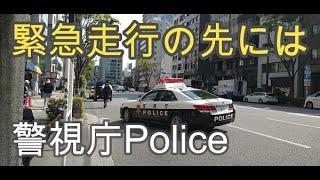 🚔突然サイレンを鳴らし緊急走行を始めたパトカー🔰🚘初心者ドライバーが捕まった 警視庁Police Car 