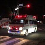 緊急走行!いつもハーモニックだけど普通のピーポーで緊走する足利消防救急隊(南救急1)/RETTUNGSDIENST/Ambulance