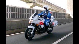 【🚨警察】💥白バイが驚異のスピードでVW UP!をキャッチ・アンド・リリース‼️ Catch and release VW UP!