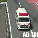 青山通り、渋谷駅前スクランブル交差点を緊急走行する救急車!
