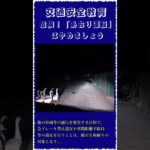 中国衝撃映像,危険!「あおり運転」はやめましょう