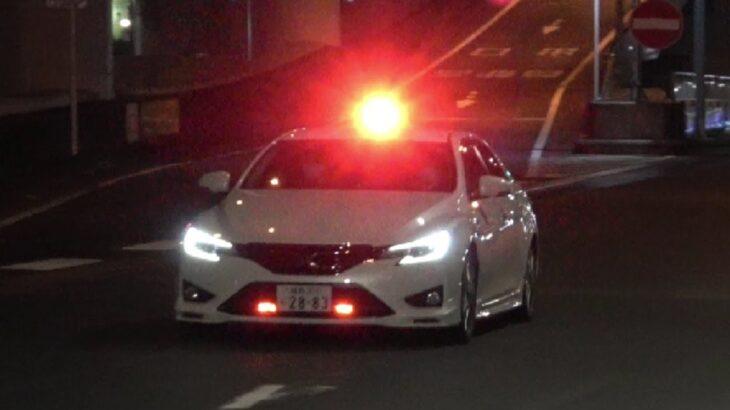 白バイ・覆面・パトカー緊急走行の瞬間!応援・クラクションで注意喚起する埼玉県警・容疑者連行・追うのが遅すぎて対象が分からなくなり追跡打ち切り・一時不停止・スピード違反・信号無視を取締る!
