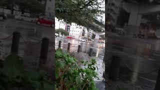 雨が降りしきる 国際センター近くの交差点を緊急走行する救急車