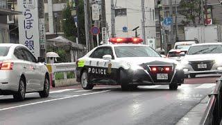 対向車が歩行者を安全に渡らせようと進路を譲っているのにその思いやりを踏みにじった歩行者妨害の軽トラ運転手にパトカーからドスの利いた声で停止命令の瞬間