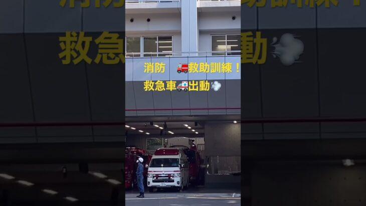 救助訓練!!初めてみた!!その横で救急車🚑 緊急出動、、