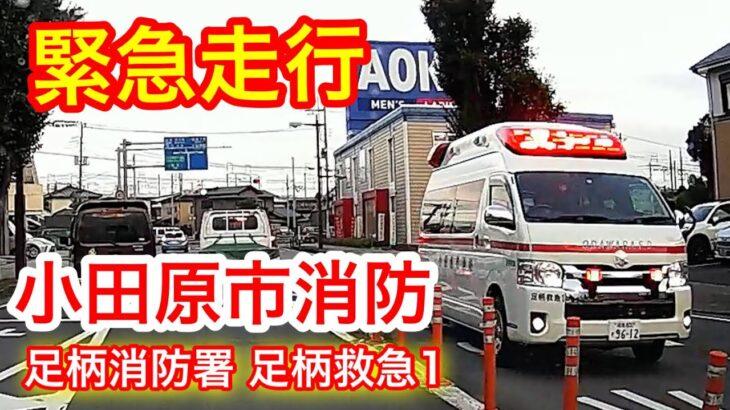 【小田原消防】足柄救急1 緊急走行