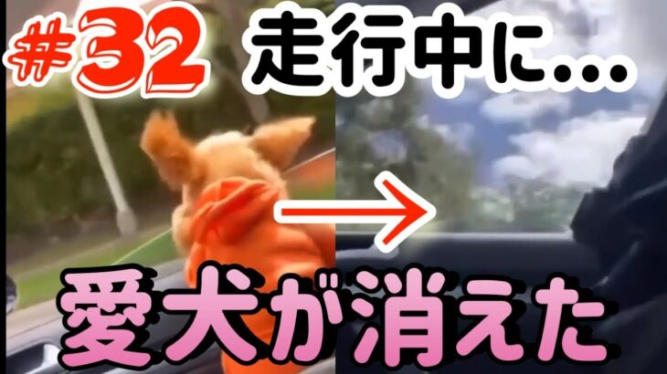 ドラレコ事故 危険運転 煽り運転 面白い映像#32