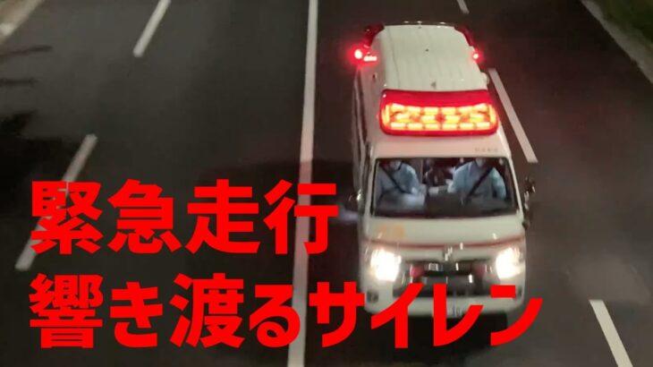 [緊急走行] 4K 暗闇に響き渡る救急車のリアルなサイレン音