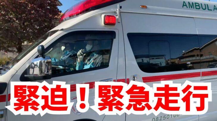 [緊迫] 4K 緊張感あふれる交差点を通過する直前 緊急走行している救急車