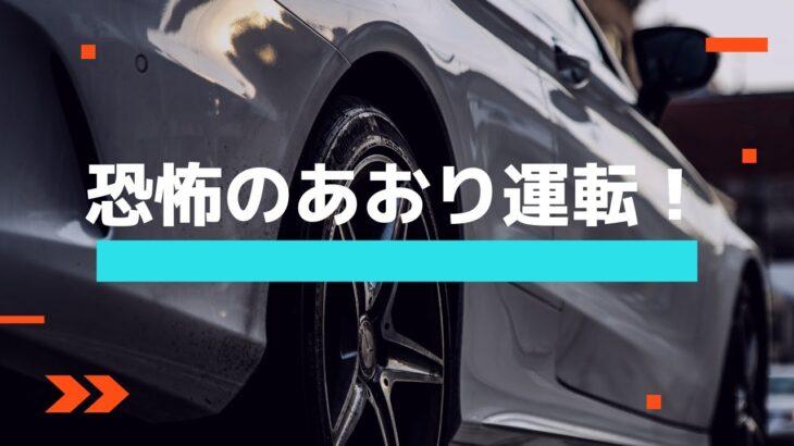 恐怖のあおり運転!(Road rage of fear!) #shorts