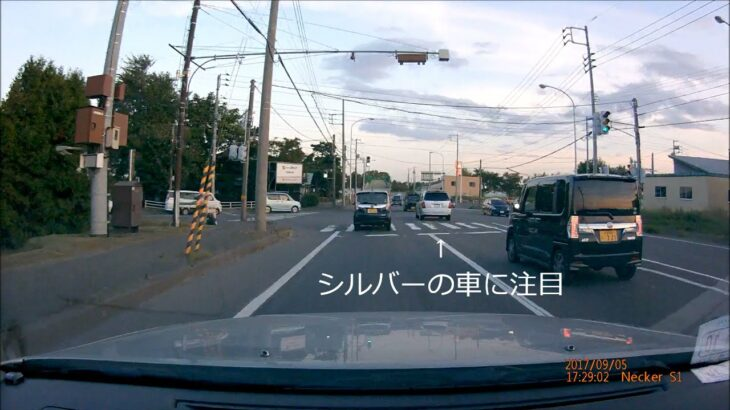 煽り運転 / Stupid Driver & Road Rage