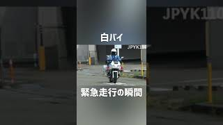 白バイが緊急走行で発進する瞬間!【交通機動隊】#shorts