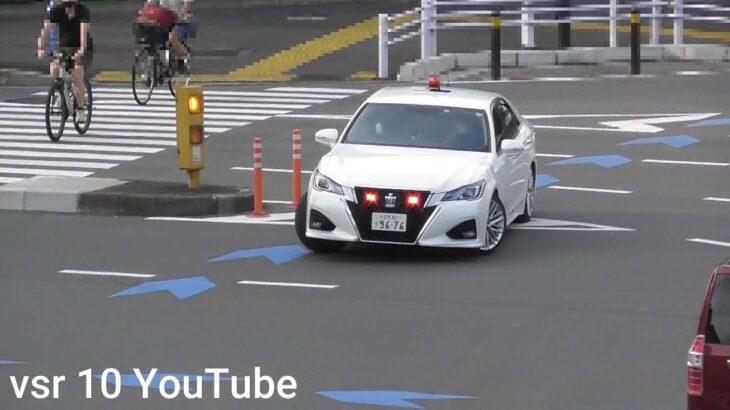 覆面パトカーの前で信号無視してしまう車両!すかさず白アス覆面が緊急走行で追走